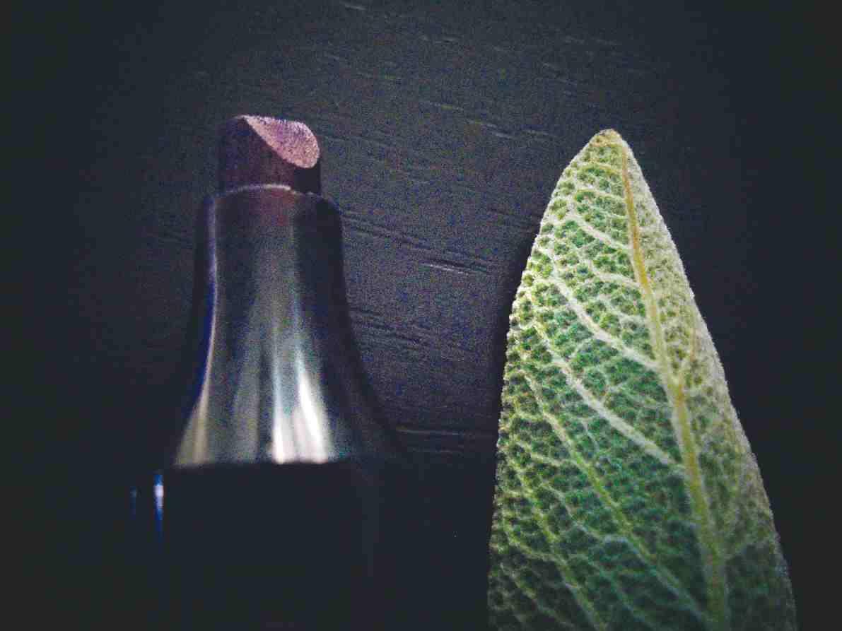 """Lancement à Colomars de """"l'HEX"""" """"herbier expérimental"""